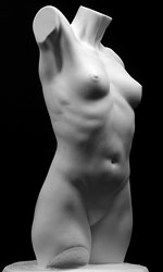 Sculpting A Female Torso